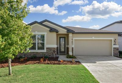 11229 Spring Point Circle Riverview FL 33579