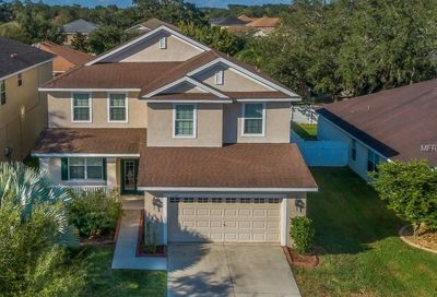 11134 Irish Moss Avenue Riverview FL 33569