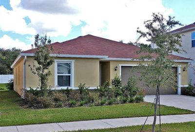 11427 Tangle Branch Lane Gibsonton FL 33534