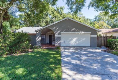 3109 Old Spring Place Tampa FL 33618