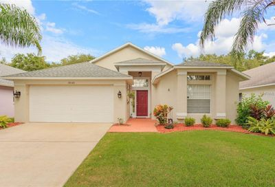 10140 Somersby Drive Riverview FL 33578