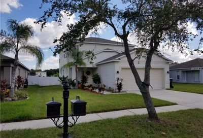 7911 Carriage Pointe Drive Gibsonton FL 33534
