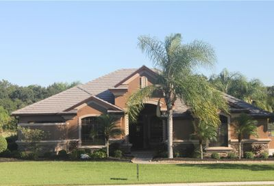3710 Twin Rivers Trail Parrish FL 34219
