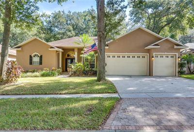 2203 Valrico Forest Drive Valrico FL 33594