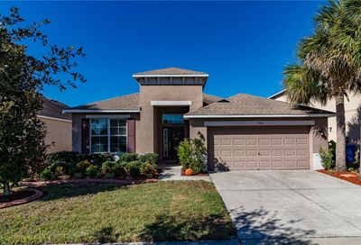 7504 Forest Mere Drive Riverview FL 33578