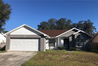 12102 Fruitwood Drive Riverview FL 33569