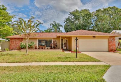 440 Meadow Lark Lane Palm Harbor FL 34683