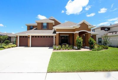 15708 Oakleaf Run Drive Lithia FL 33547