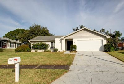 3039 E Dorchester Drive Palm Harbor FL 34684