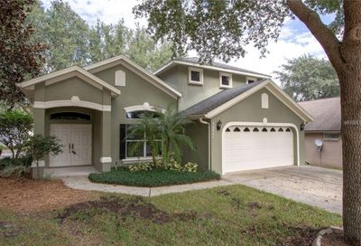 17421 Woodfair Drive Clermont FL 34711