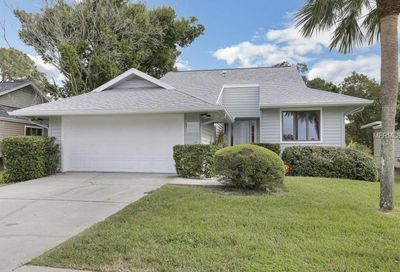 1003 Lake Avoca Drive Tarpon Springs FL 34689