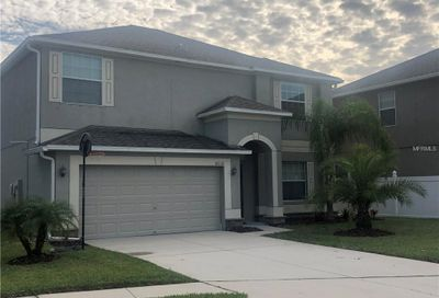 18332 Rossendale Court Land O Lakes FL 34638