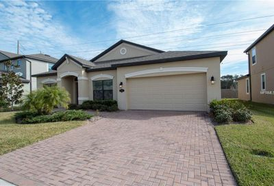 714 Wellington Court Oldsmar FL 34677