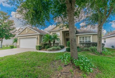 15513 Starling Water Drive Lithia FL 33547