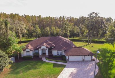 17401 Mary Charlotte Place Lutz FL 33549