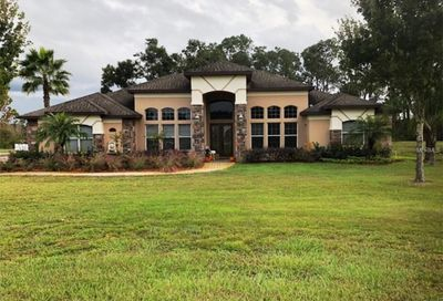 21320 Marsh View Court Clermont FL 34715