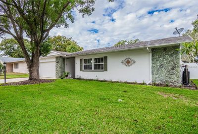 163 Sunward Avenue Palm Harbor FL 34684