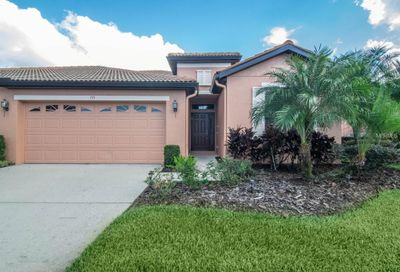 155 Shell Falls Drive Apollo Beach FL 33572