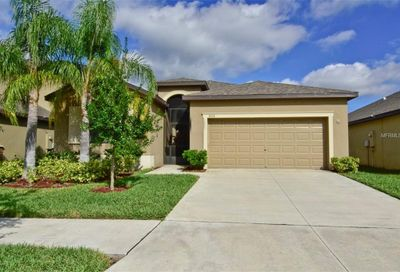 11016 Whittney Chase Drive Riverview FL 33579
