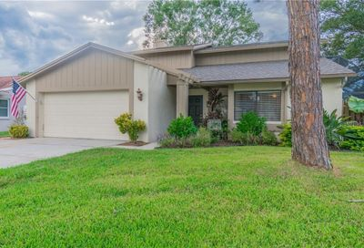 15710 Pinto Place Tampa FL 33624