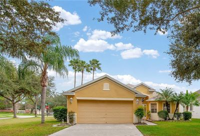 19009 Falcons Place Tampa FL 33647