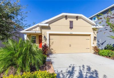 7504 Sea Lilly Court Apollo Beach FL 33572