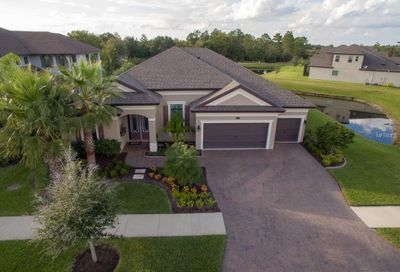 13326 Fawn Lily Drive Riverview FL 33579