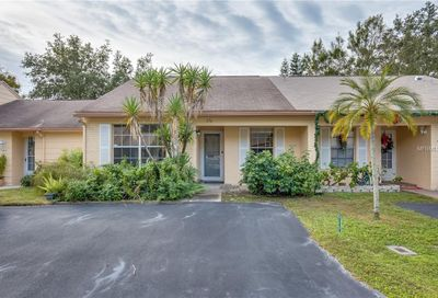 376 Estero Court Safety Harbor FL 34695