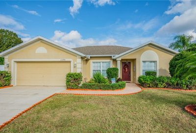 23745 Peace Pipe Court Lutz FL 33559
