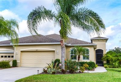 2217 Oakley Green Drive Sun City Center FL 33573