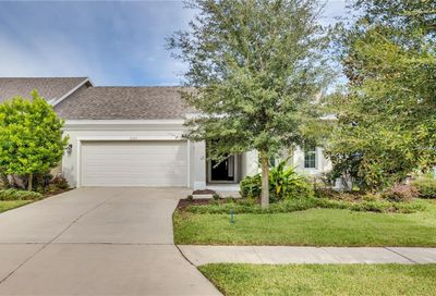 6353 Hawk Grove Court Wesley Chapel FL 33545