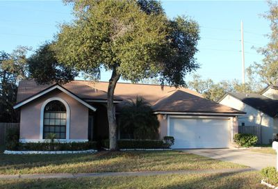 12104 Fruitwood Drive Riverview FL 33569
