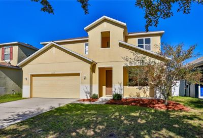 11173 Golden Silence Drive Riverview FL 33579