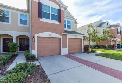 26602 Castleview Way Wesley Chapel FL 33544