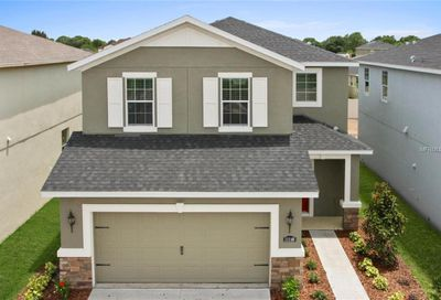 11607 Fringetree Court Riverview FL 33579