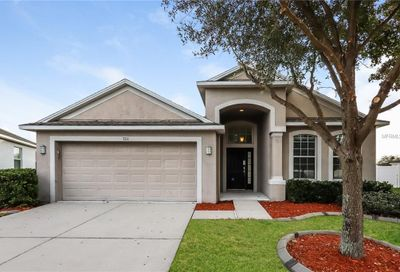 7111 Forest Mere Drive Riverview FL 33578