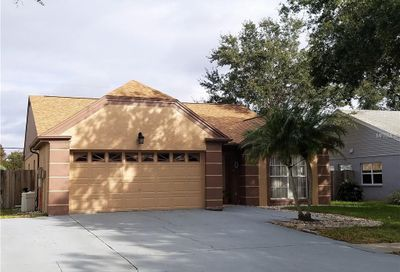 3123 Sumner Way Palm Harbor FL 34684