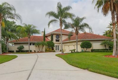 19004 Cour Estates Lutz FL 33558