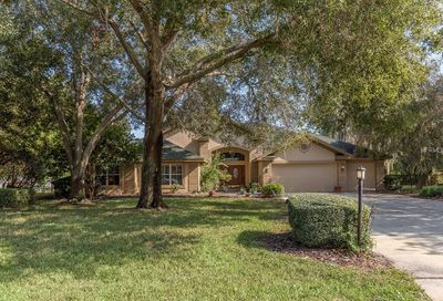 8922 Skymaster Drive New Port Richey FL 34654
