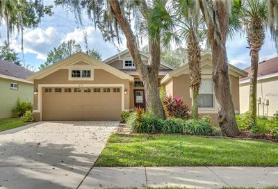 6113 Gannetwood Place Lithia FL 33547
