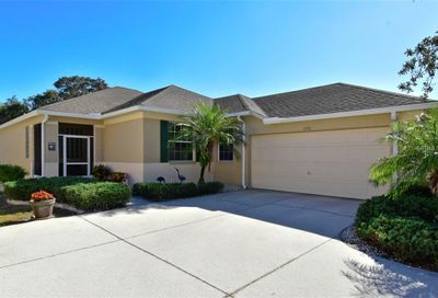 1328 Misty Greens Drive Sun City Center FL 33573