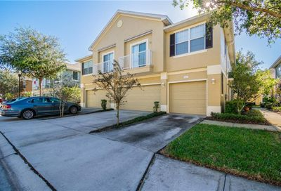 6738 Breezy Palm Drive Riverview FL 33578