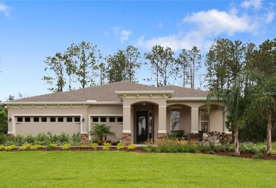 11715 Lake Lucaya Drive Riverview FL 33579