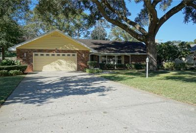 10024 Hampton Place Tampa FL 33618