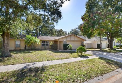 15127 Willowdale Road Tampa FL 33625