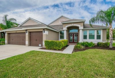 13601 Artesa Bell Drive Riverview FL 33579