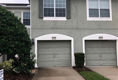 10209 Red Currant Court Riverview FL 33578