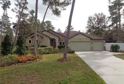 13502 Gopher Pond Court Hudson FL 34669