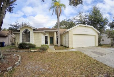 12020 Fruitwood Drive Riverview FL 33569
