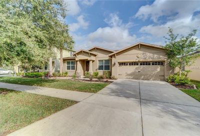 3851 Evergreen Oaks Drive Lutz FL 33558